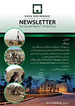 nn newsletter_dec_2013